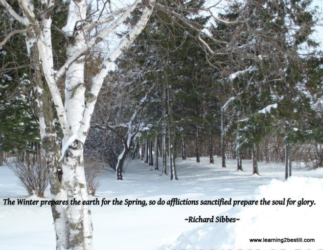 Winter with Quote